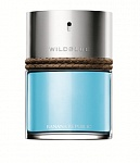 Banana Republic Wildblue men